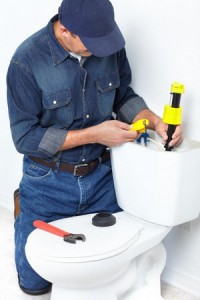Toilet Repair & Installation Services
